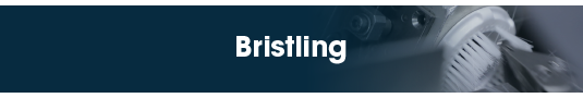 TEAM Tech: Bristling